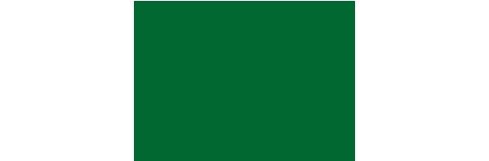 Logotipo O\'Higgins al día